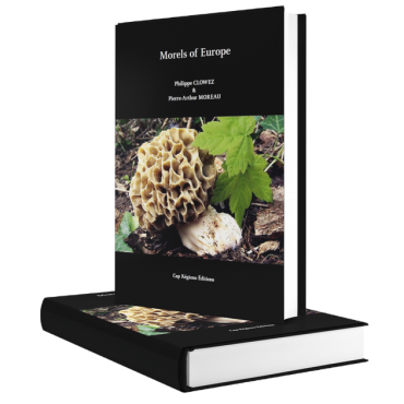 Campagne Indiegogo pour Morels of Europe